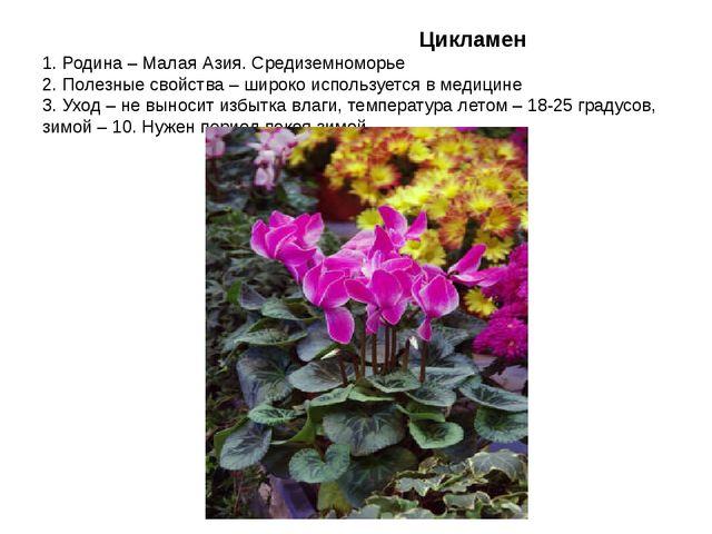 Цикламен 1. Родина – Малая Азия. Средиземноморье 2. Полезные свойства – широ...