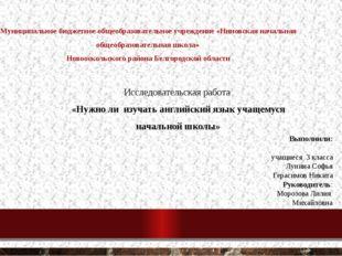 Муниципальное бюджетное общеобразовательное учреждение «Ниновская начальная о