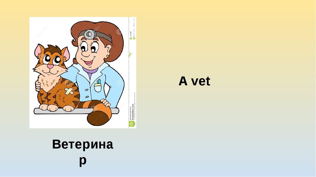 A vet Ветеринар