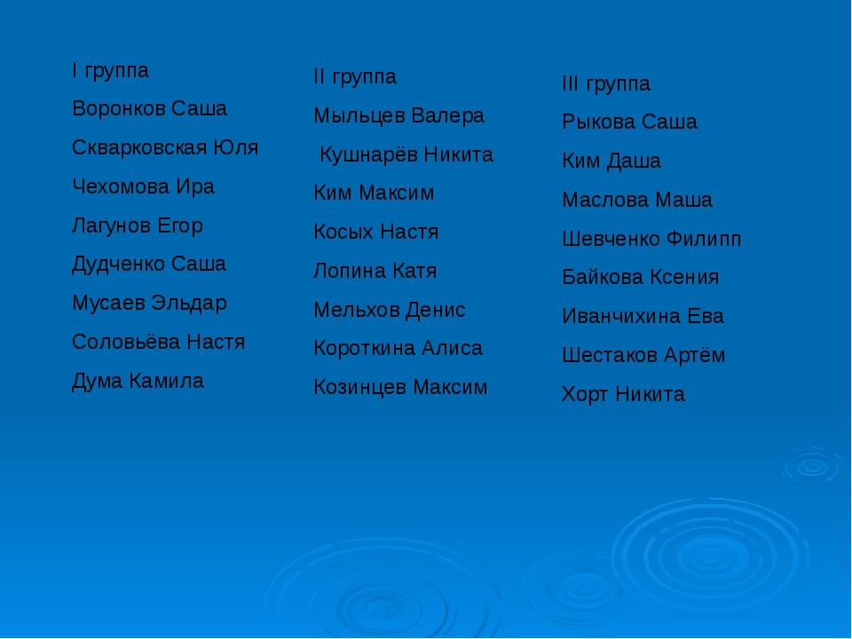 I группа Воронков Саша Скварковская Юля Чехомова Ира Лагунов Егор Дудченко Са...