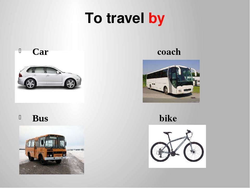 To travel by Car coach Bus bike