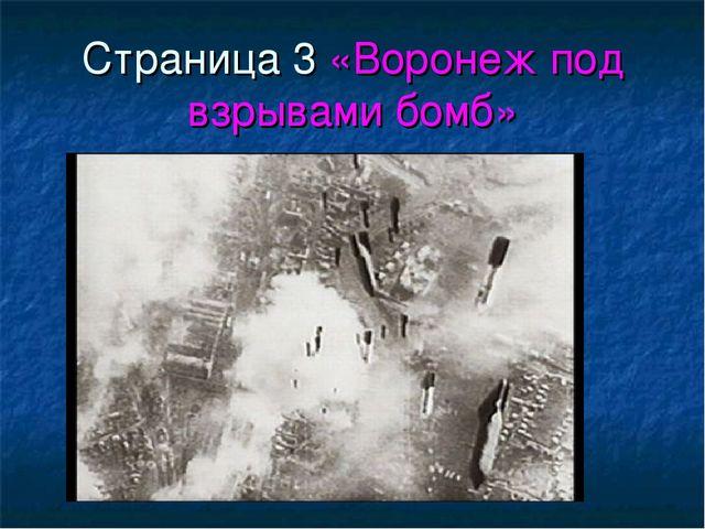 Страница 3 «Воронеж под взрывами бомб»