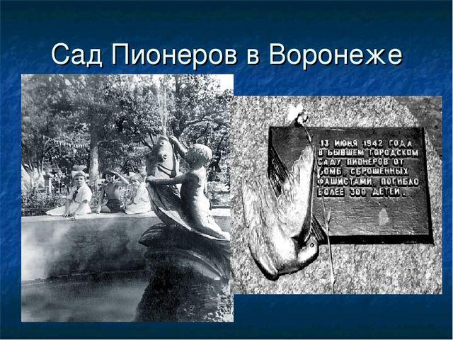 Сад Пионеров в Воронеже