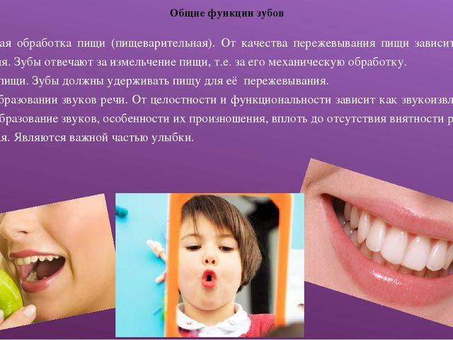 Общие функции зубов Механическая обработка пищи (пищеварительная). От качеств...