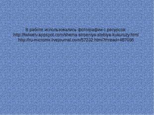 В работе использовались фотографии с ресурсов: http://twlwelv.appspot.com/she