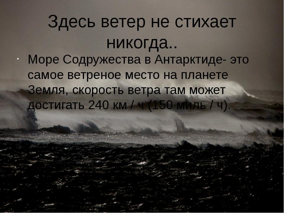 Здесь ветер не стихает никогда.. Море Содружества в Антарктиде- это самое вет...