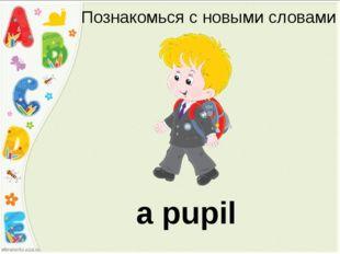Познакомься с новыми словами a pupil