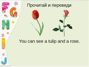 Прочитай и переведи You can see a tulip and a rose.