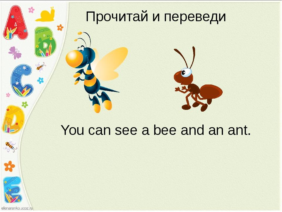 Прочитай и переведи You can see a bee and an ant.