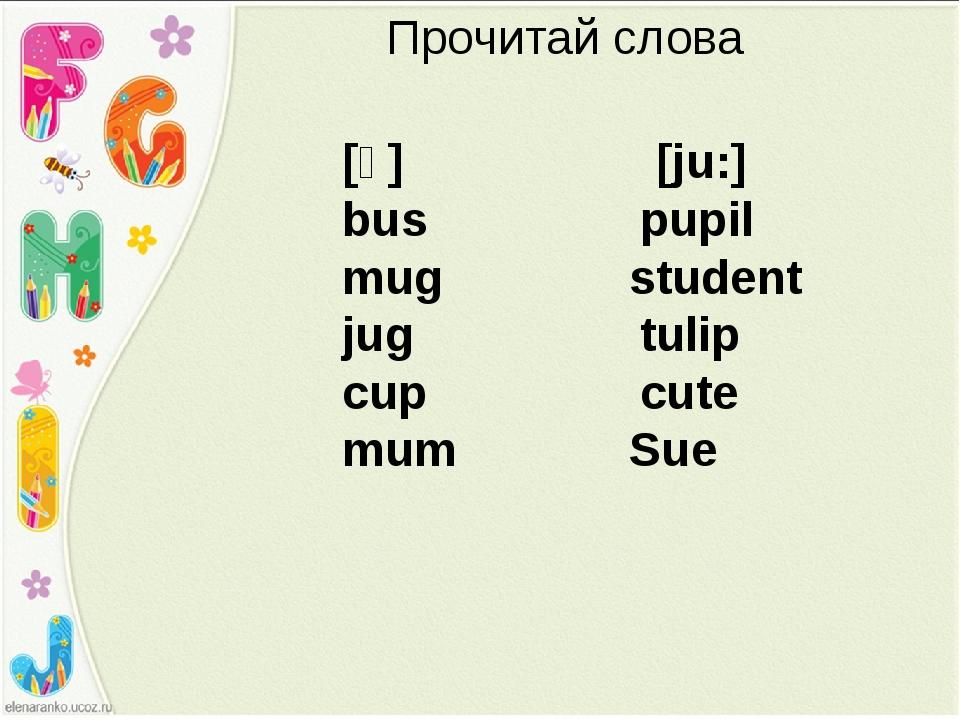 [ᴧ] [ju:] bus pupil mug student jug tulip cup cute mum Sue Прочитай слова