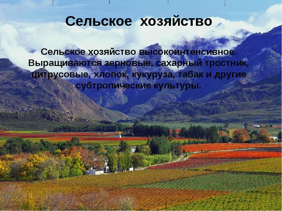 Сельское хозяйство высокоинтенсивное. Выращиваются зерновые, сахарный тростн...