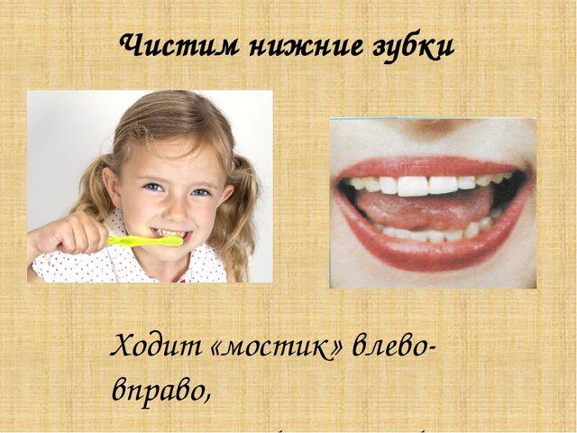 Чистим нижние зубки Ходит «мостик» влево-вправо, Чистит зубки очень браво.
