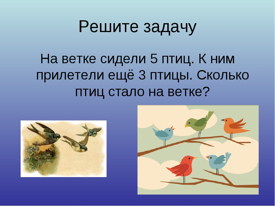 Решите задачу На ветке сидели 5 птиц. К ним прилетели ещё 3 птицы. Сколько пт...