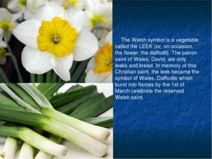 The Welsh symbol is a vegetable called the LEEK (or, on occasion, the flower