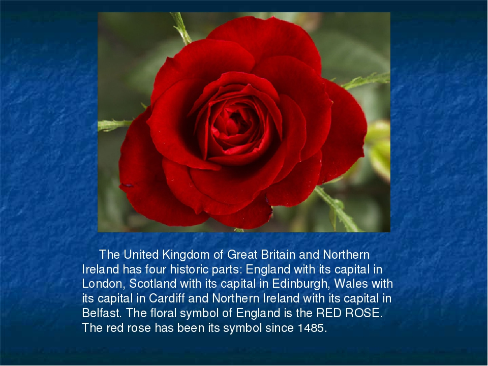 The United Kingdom of Great Britain and Northern Ireland has four historic p...