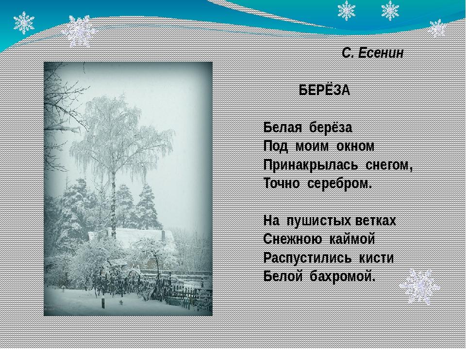 С. Есенин БЕРЁЗА Белая берёза Под моим окном Принакрылась снегом, Точно сере...