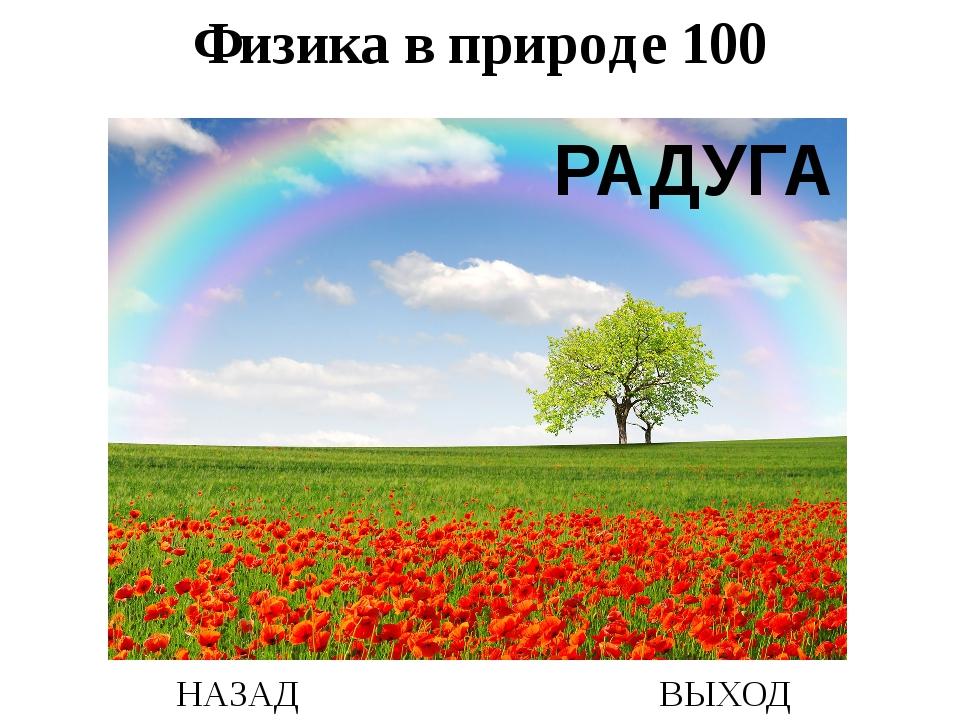 НАЗАД ВЫХОД РАДУГА Физика в природе 100