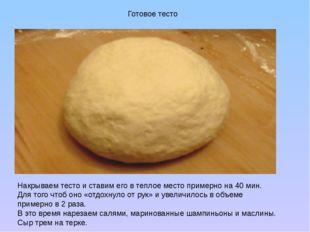 Готовое тесто Накрываем тесто и ставим его в теплое место примерно на 40 мин