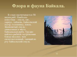 Флора и фауна Байкала. В озере насчитывается 58 видов рыб. Наиболее известны