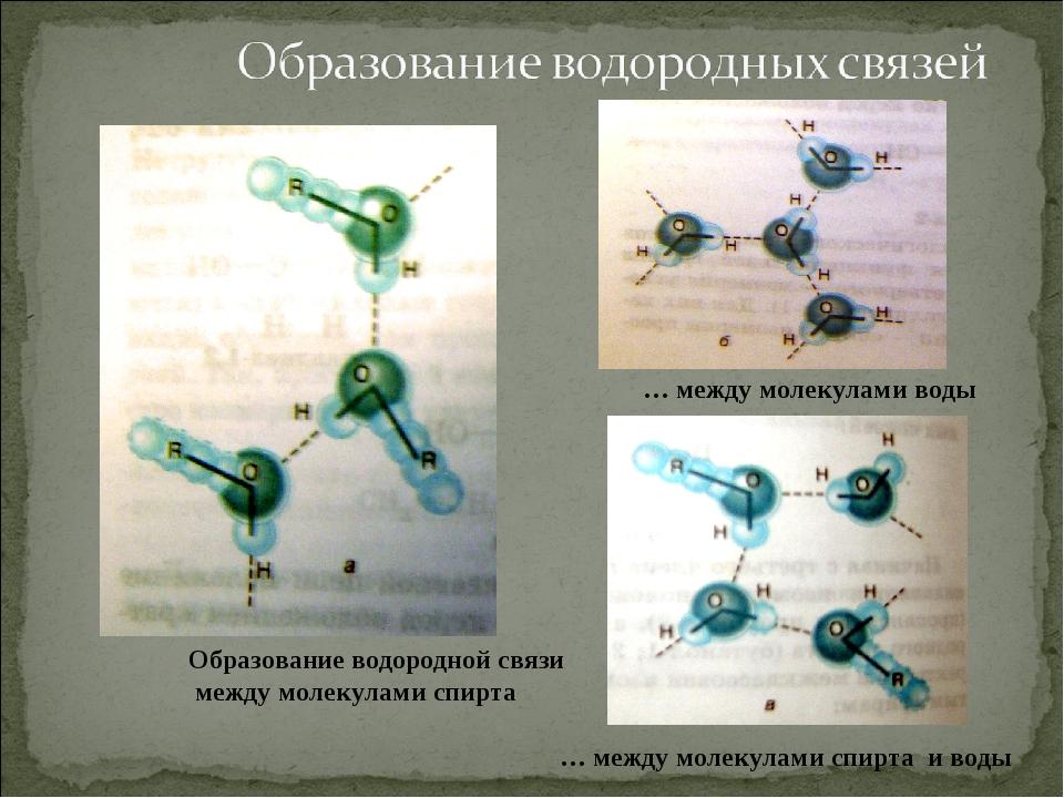 Образование водородной связи между молекулами спирта … между молекулами воды...