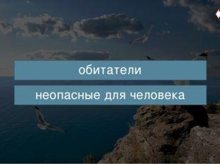 Черноморская скорпена (от лат. Scorpaena porcus) – хищная рыба, обитающая в С