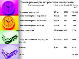 Смета расходов по реализации проекта Наименование товараКоличествоЦена (руб