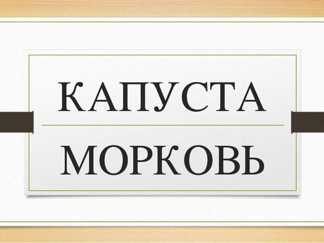 КАПУСТА МОРКОВЬ