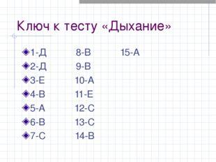 Ключ к тесту «Дыхание» 1-Д 8-В 15-А 2-Д 9-В 3-Е 10-А 4-В 11-Е 5-А 12-С 6-В 13