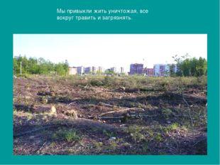 Мы привыкли жить уничтожая, все вокруг травить и загрязнять.