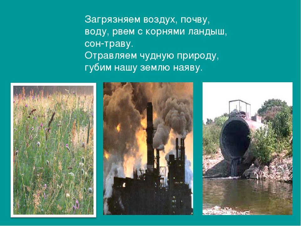 Загрязняем воздух, почву, воду, рвем с корнями ландыш, сон-траву. Отравляем ч...