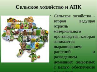 Сельское хозяйство и АПК Сельское хозяйство - вторая ведущая отрасль материал