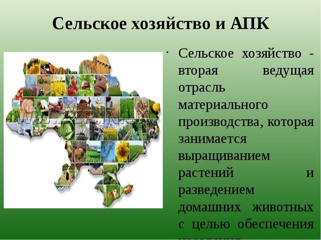 Сельское хозяйство и АПК Сельское хозяйство - вторая ведущая отрасль материал...