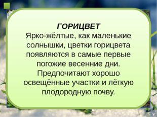ПЕРЕЛЕСКА ПЕРЕЛЕСКА Печёночницу в народе называют перелеской, поскольку она