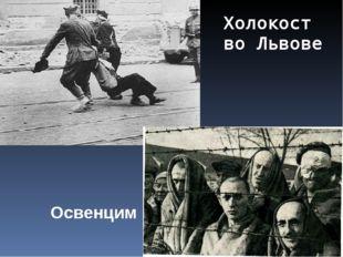Холокост во Львове Освенцим