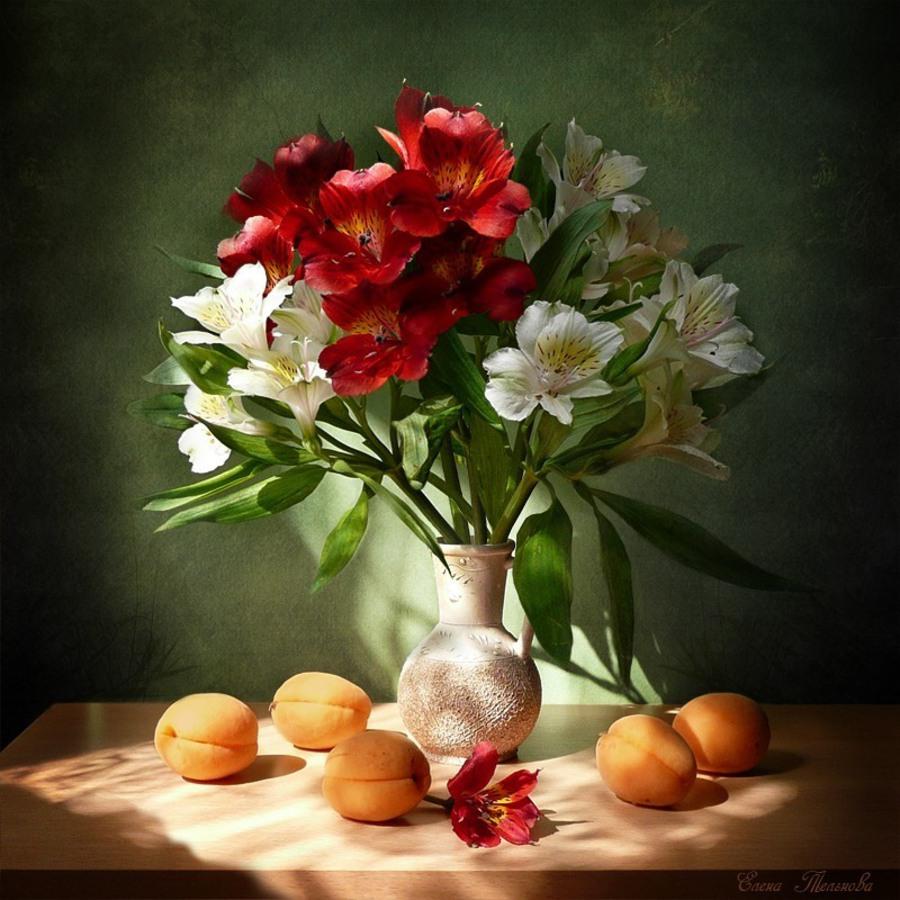 Натюрморты с цветами и