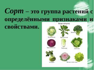 Сорт – это группа растений с определёнными признаками и свойствами.