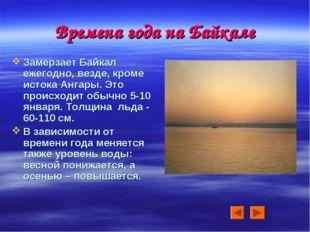 Времена года на Байкале Замерзает Байкал ежегодно, везде, кроме истока Ангары
