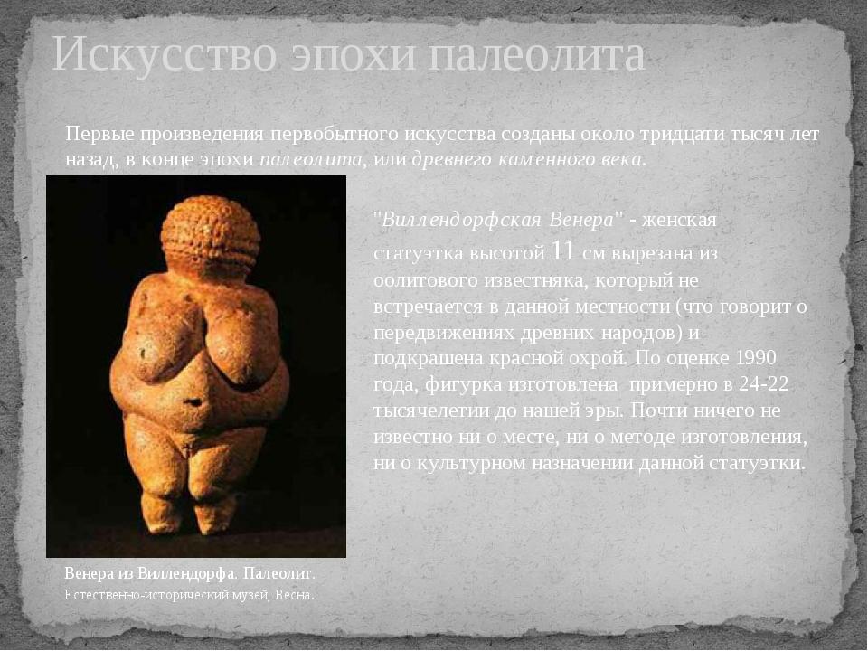 Искусство эпохи палеолита Венера из Виллендорфа. Палеолит. Естественно-истори...