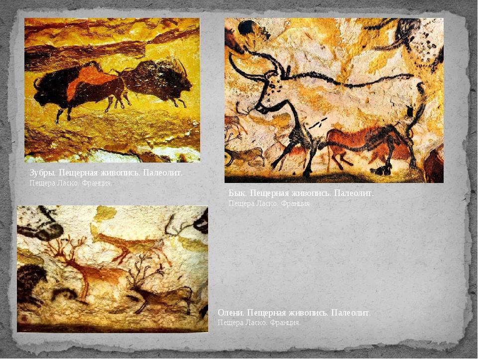 Зубры. Пещерная живопись. Палеолит. Пещера Ласко. Франция. Олени. Пещерная жи...