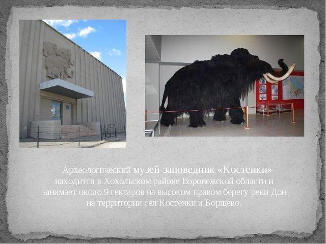 Археологический музей-заповедник «Костенки» находится в Хохольском районе...