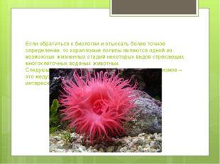 Если обратиться к биологии и отыскать более точное определение, то коралловые