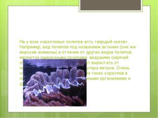 Не у всех коралловых полипов есть твердый скелет. Например, вид полипов под н