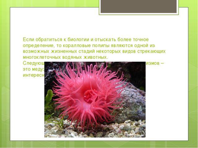 Если обратиться к биологии и отыскать более точное определение, то коралловые...