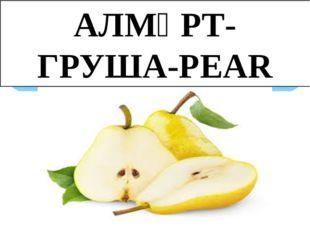 АЛМҰРТ-ГРУША-PEAR