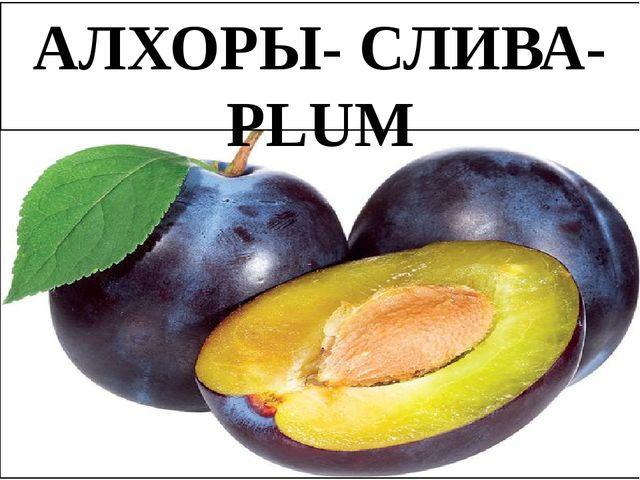 АЛХОРЫ- СЛИВА-PLUM