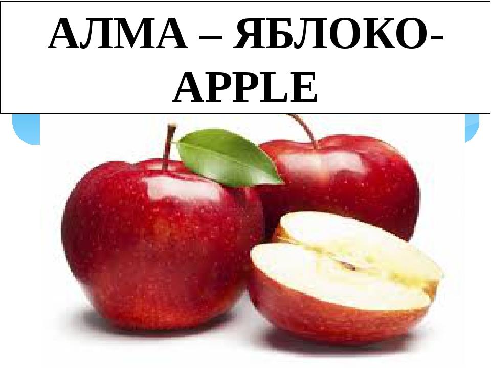 АЛМА – ЯБЛОКО-APPLE