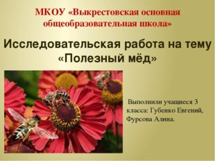 МКОУ «Выкрестовская основная общеобразовательная школа» Исследовательская раб