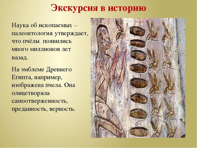 Экскурсия в историю Наука об ископаемых – палеонтология утверждает, что пчёлы...