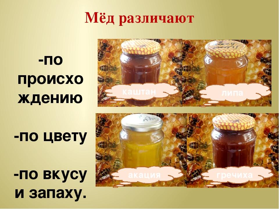 Мёд различают -по происхождению -по цвету -по вкусу и запаху. липа акация гре...