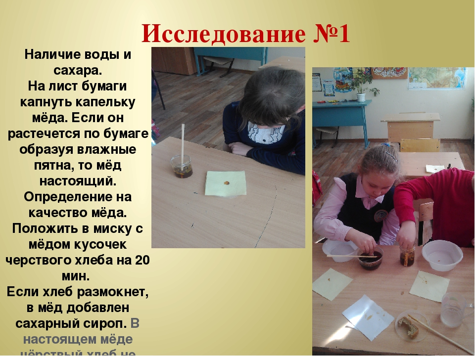 Исследование №1 Наличие воды и сахара. На лист бумаги капнуть капельку мёда....